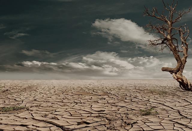 uschlá půda